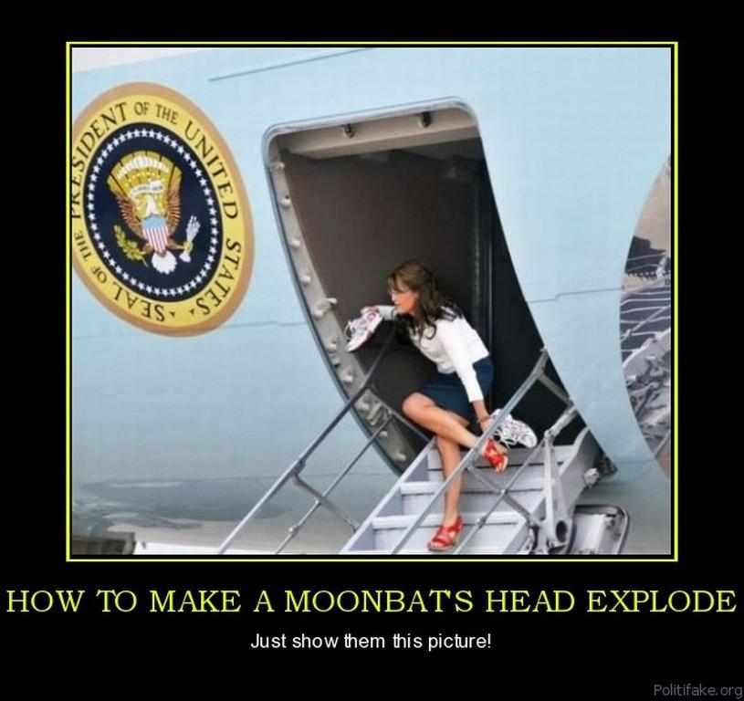 Sarah Palin make moonbats heads explode