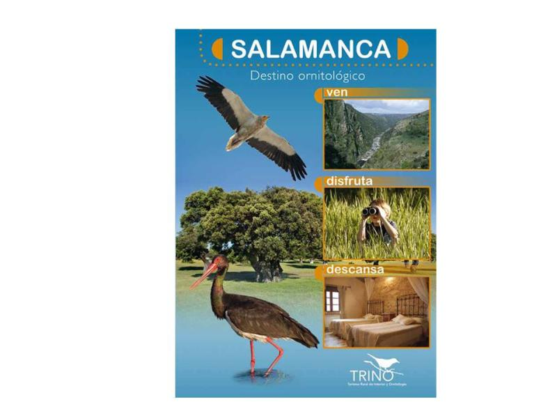 Proyecto TRINO en SALAMANCA