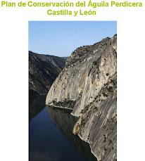 Plan de Conservación del águila perdicera en Castilla y León. 2010