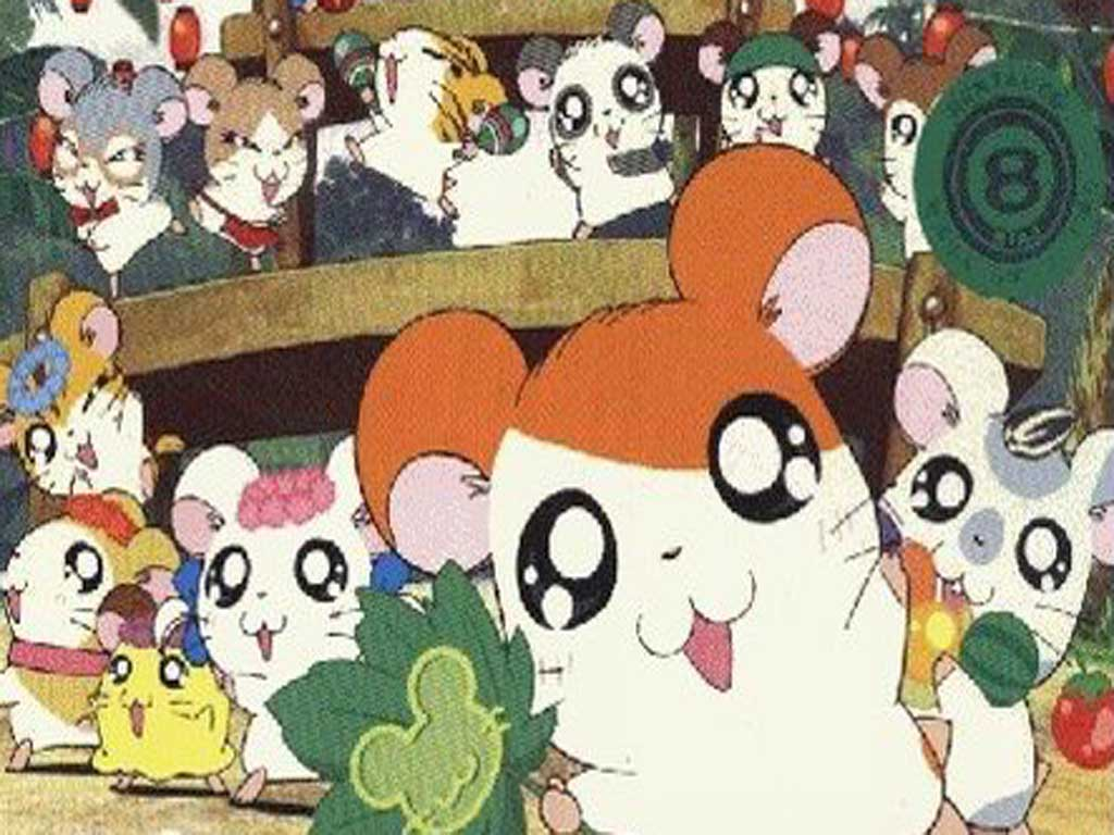 How To Draw Hamtaro From The Adventures Of Hamtaro Step 4jpg   Apps ...