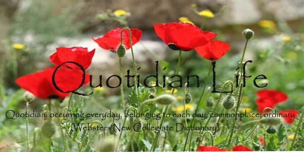 Quotidian Life