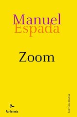"""ZOOM. CIENTO Y PICO NOVELAS A ESCALA"""
