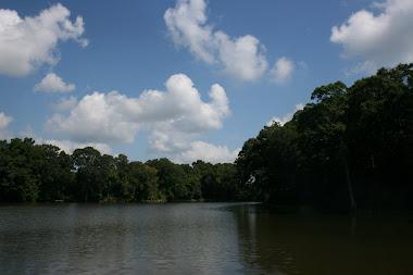 Dividing  Creek