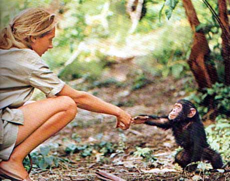 presented by jane goodall