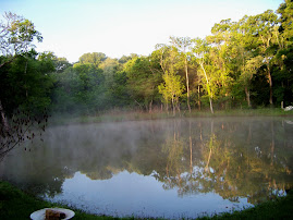 Morning Mist on the Pond