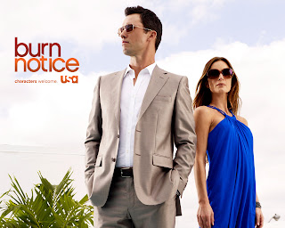 Photo HD Jeffrey Donovan et Gabrielle Anwar dans Burn notice wallpaper