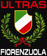 Logo-uri Ultrasi Ricamo+manica+sinistra