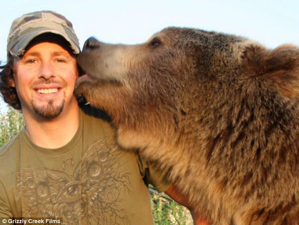 random friendly bear