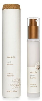 amala+purifying+moisturizer My Favorite Skin Care Products EVER: Amala