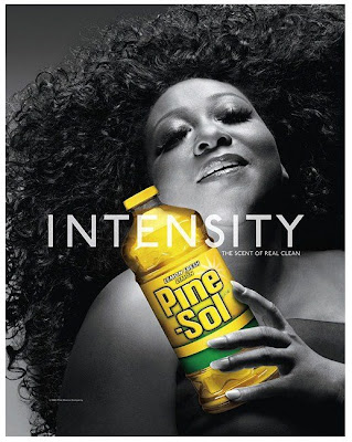 pine+sol+campaign+troy+jensen The Pine Sol Lady Gets A Makeover