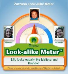 Look Alike Meter