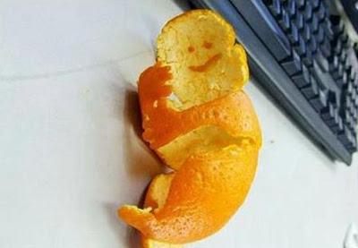 http://2.bp.blogspot.com/_VCLABPKvaS4/SujC3ycgCDI/AAAAAAAAcG8/dE8Pk3Wq5_A/s400/orange_10.jpg