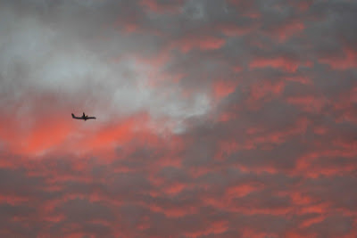 plane landing in morning red sky