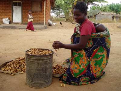 woman shelling groundnuts