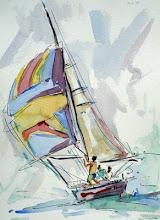 regata - joão barcelos