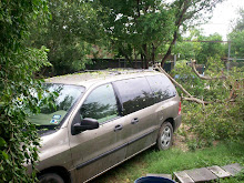 The tree is off the van!