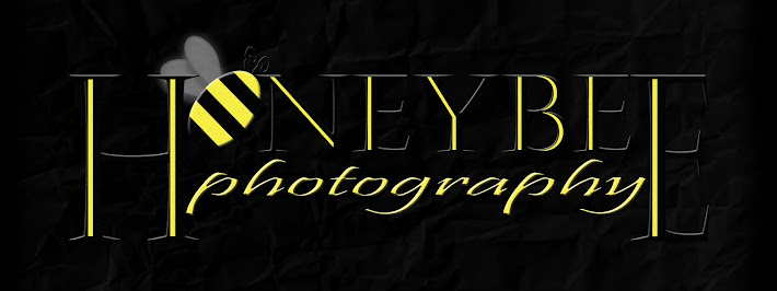 Honeybee Photography