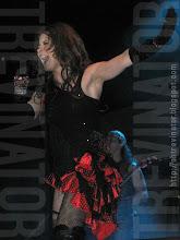 Una Rosa Blu Tour 2009