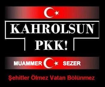 PKK TERORUNU,GOOGLE'UN SOSYAL AGLARIN KADROLU PKK IBNESI OZKAN BOSTANCI SEREFSIZINI LANETLEMEK'
