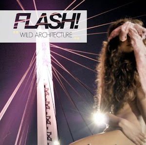 Flash! is a free photography book coming out every two months