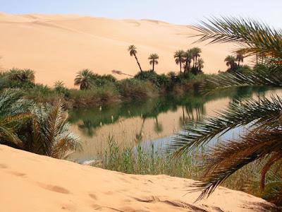Oasis Oasis-desert