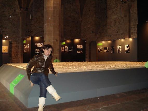In mostea nella sala d'Arme di Palazzo Vecchio Firenze http://www.firenze1000.net/modello_firenze10