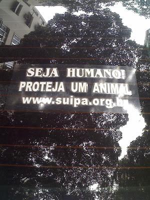 Seja humano, proteja um animal