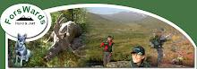 Forswards hund o jakt