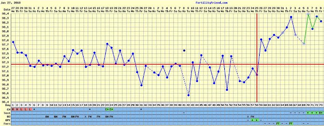 Typical bbt chart clomid