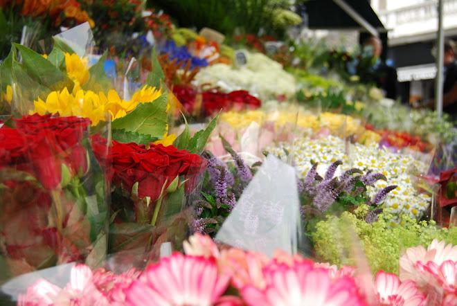 Flower shop, London, Agost 2008