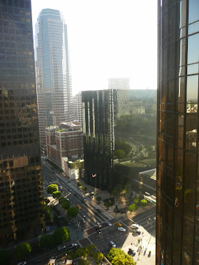 LA Downtown from Hotel 2010