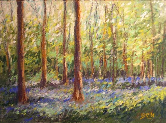 my french easel bluebell wood pastel