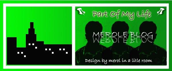 meroleblog