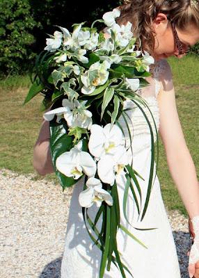 http://2.bp.blogspot.com/_VQdsHBILbn0/S6IctZiUVoI/AAAAAAAAARc/S-dFND-ymmg/s400/06+theme+orchidee+bouquet+mariee.jpg