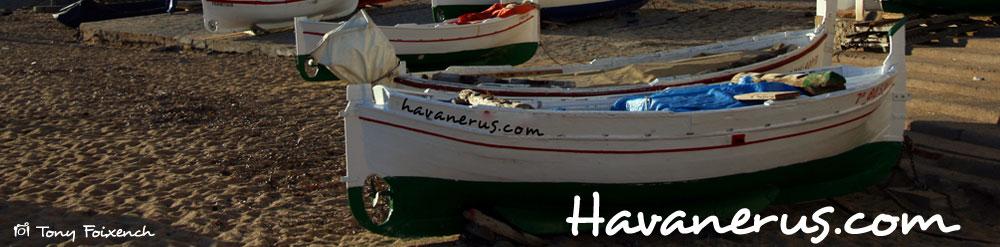 Havanerus | Havaneres i Cançó de taverna | Noticies