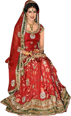 Indian fashion blog india fashion trends sarees for Indian traditional wedding dress