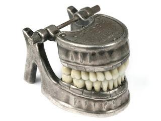 ادوات طب الاسنان dental-model-vecabe-