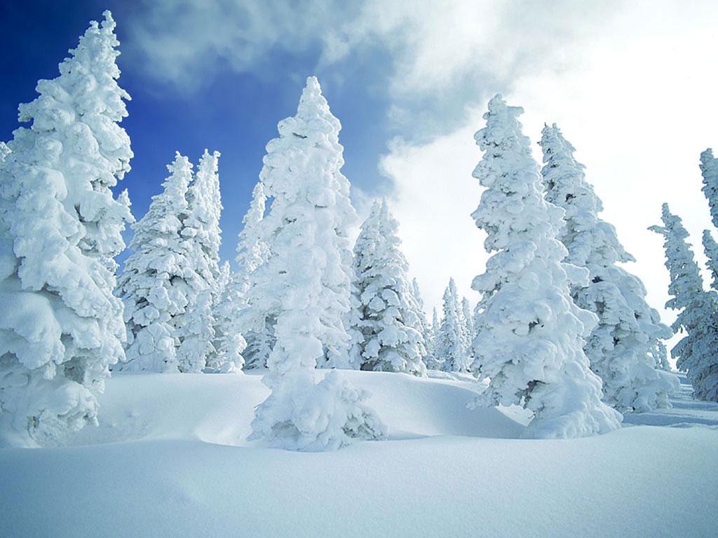 http://2.bp.blogspot.com/_VSauEPmhbYE/TP1ta0pp1jI/AAAAAAAAABg/WCruSC_iCB8/s1600/peisaje-mirifice-iarna-pentru-desktop-Wallpapers-avatare.jpg