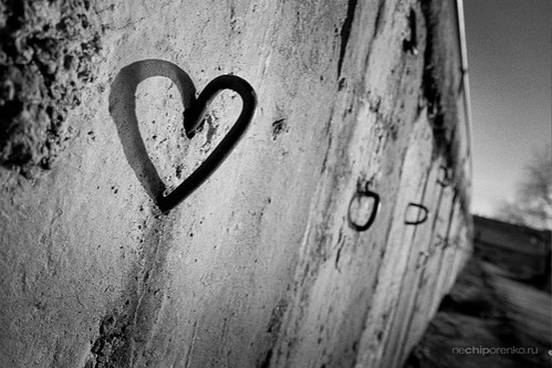 black and white photography love heart