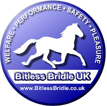 Bitless Bridle UK