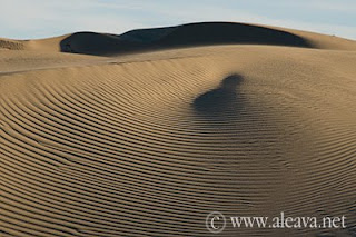 Sand from Valdes Peninsula and his hypnotic magic