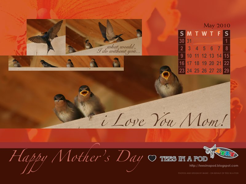 FREE May/Mother's Day Desktop Background