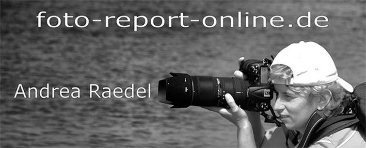 foto-report-online
