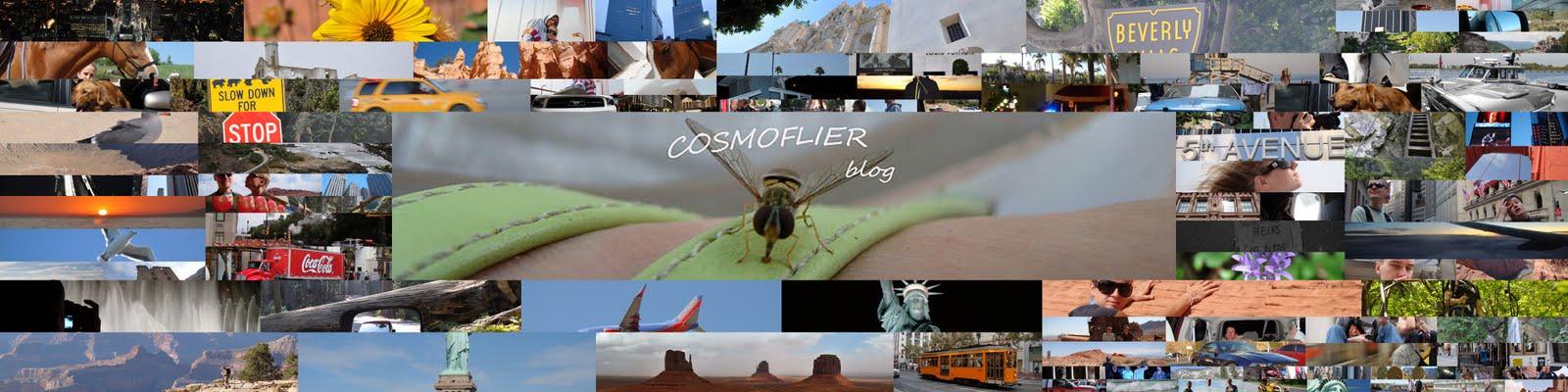 Cosmoflier blog