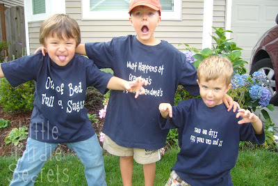 Silly T Shirts To Make With Your Kids Little Birdie Secrets