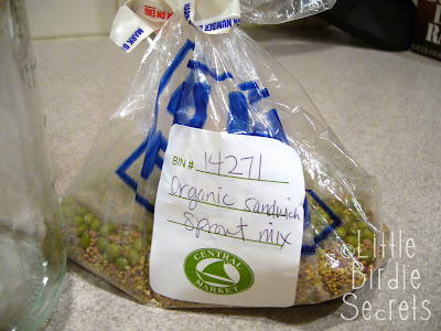 mung bean sprouting instructions