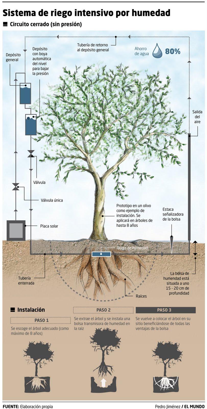 Infografia periodistica y dise o gr fico sistema de riego for Sistema de riego