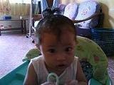 Areefa