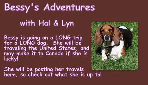 Bessy's Adventures