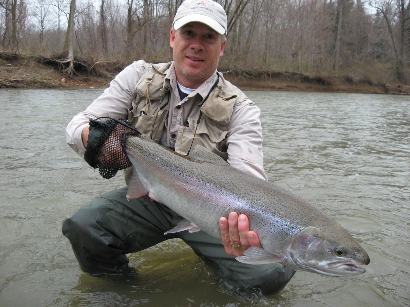 Pa ohio steelhead guides fly fishing reports fly tying for Steelhead fly fishing